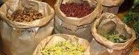 Plante medicinale: Sase lucruri pe care trebuie sa le cunosti atunci cand le recoltezi
