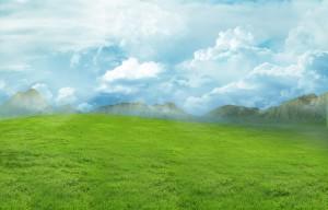 desert verde